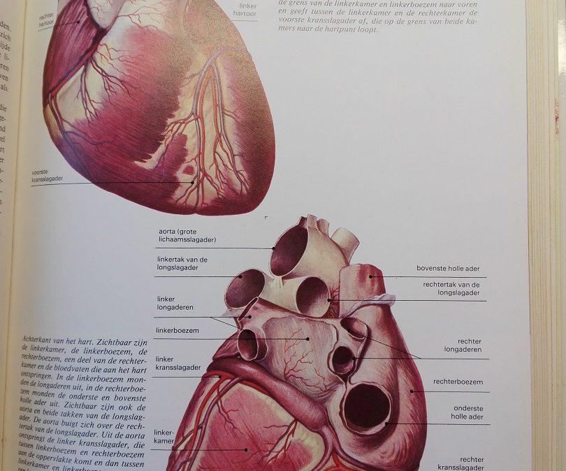 Hou van je hart.